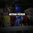 Meydan Preview & Punts. (09/01/2020)