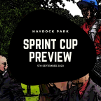 Sprint Cup Preview