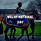 Welsh National Day Preview
